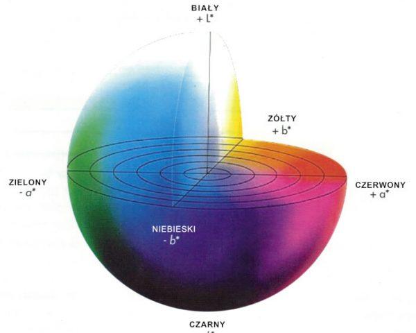 kula kolorów